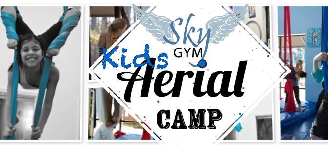 Kid's Aerial Summer Camp: July 17-21
