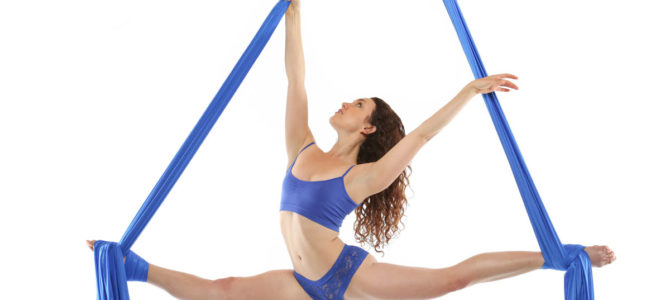 Aerial Physique Workshops